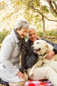 pet euthanasia perth